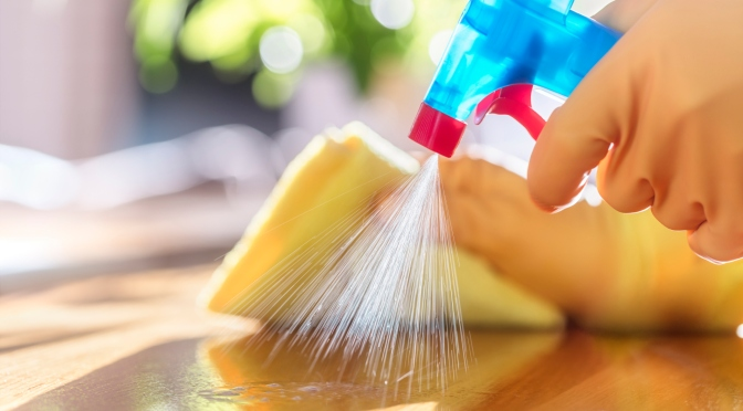 Everything You Need to Know On How To Keep Your Home Germ Free
